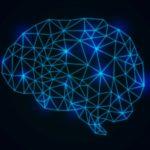 脳神経を成長させる「脳神経成長因子」となるサプリメントまとめ